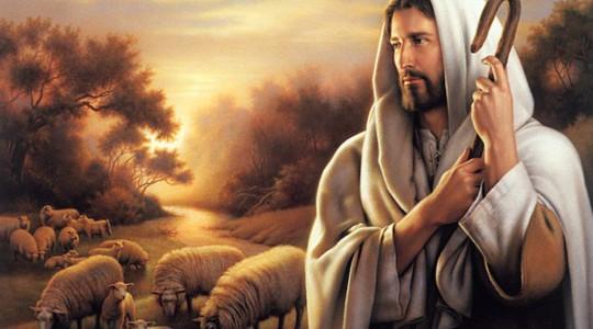 4 Niedziela Wielkanocna (11 maja 2014)